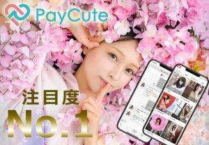 PayCute画像
